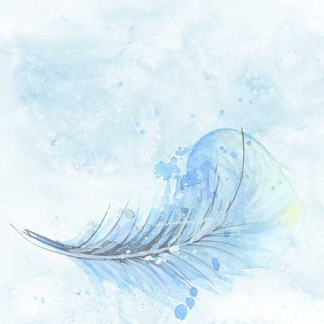 feather-1588819_640
